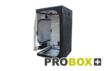 Catégorie Tentes ProBox