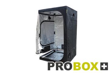 Catégorie Probox Master Version