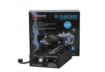 Catégorie Ballast CMH 315W et 630W